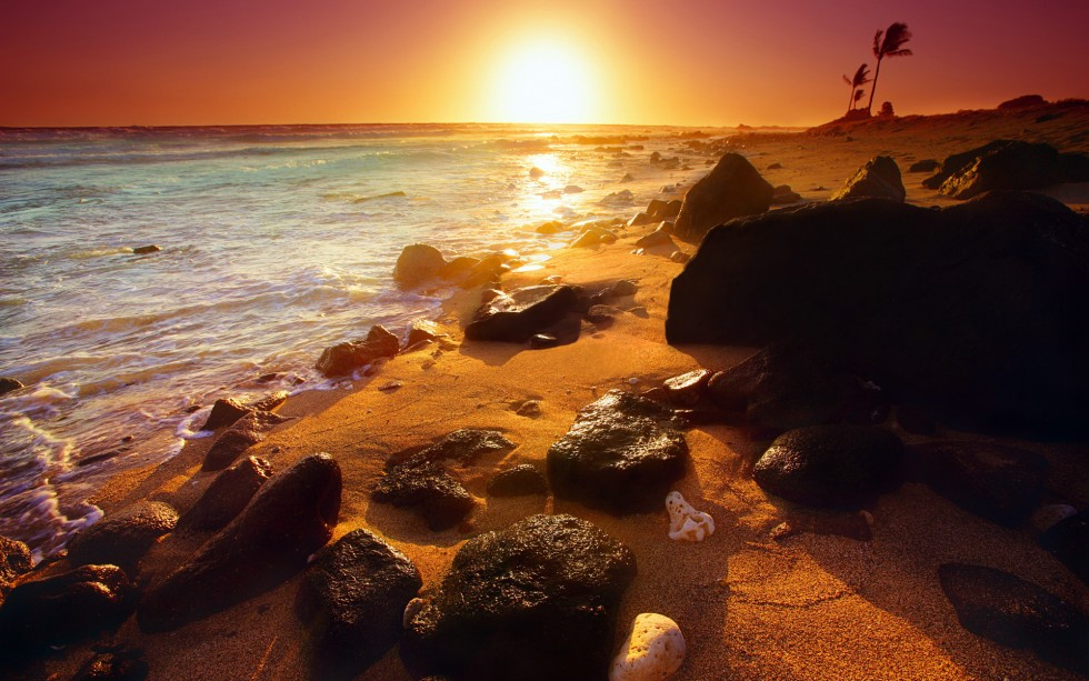 Rocky shoreline, Hawaii, U.S.